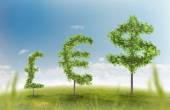 Financial growth and success on a green summer natural green grass landscape with a single trees in the shape of a money sign showing a business concept of growing prosperity and investments — Stock Photo