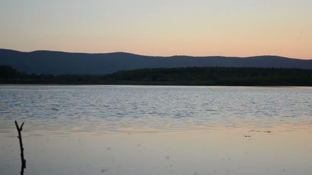 Beautiful evening summer. — Vídeo de stock