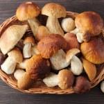 Porcini mushrooms — Stock Photo #53987915