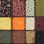 Beans — Stock Photo #58509969