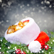 Christmas background with red Santa Claus hat and holly leaves — Stock Photo #52507127
