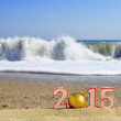 New year 2015 sign with seashells, starfish and christmas ball on a beach sand — Stock Photo #60597757