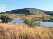 Pilanesberg Game Reserve — Stock Photo