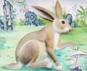 Rabbit High Relief and Wall Painting — Stock Photo
