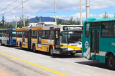 Local Buses Outside Quitumbe Bus Terminal in Quito, Ecuador — Stock Photo
