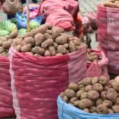 Potato Stand on Street Market in La Paz, Bolivia — Stock Photo