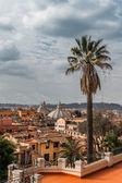 Beautiful panorama of Rome — Stock Photo