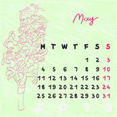 May 2015 flowers — Stock Photo