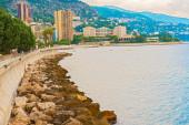 Панорамный вид на Монте-Карло — Стоковое фото