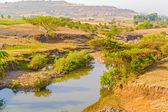 Farmland landscape in Ethiopia — Stock Photo