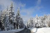 Winter in the moutains — Stock Photo