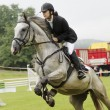 Show jumping — Stock Photo #52411943