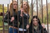 Girls behind bars — Foto Stock