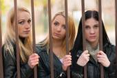 Girls behind bars — Foto Stock