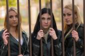 Girls behind bars — Stock Photo