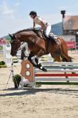 Mostrar saltos de caballo — Foto de Stock