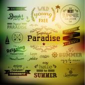 Typography Summer Holiday Quote Vector Design — Stock Vector