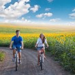 Teen couple riding bike in sunflower field — Stock Photo #52720921