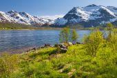 Mountain lake, Lofoten Islands, Norway — Stock Photo