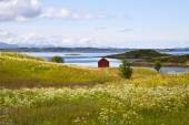 Rural lanscape of Norway — Stock Photo