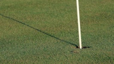 Golf ball getting into hole — Stock Video