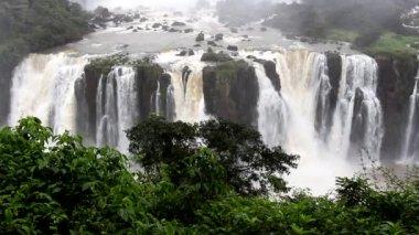 Chutes d'Iguazu — Vidéo