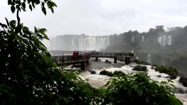 Iguazu Falls — Stock Video