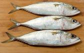 Three small fishes — Stock Photo