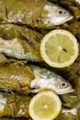 Fish in vine leaves — Stock Photo