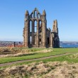 Whitby Abbey — Stock Photo #65442291