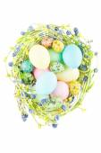 Wicker nest with easter eggs — Stok fotoğraf