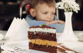 Huge slice of delicious layered cake — Stock Photo