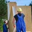 Two builders installing a wooden wall panel — Stock Photo #61239549