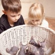 Постер, плакат: Kids Looking at the Sphynx Basket in a Basket