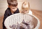 Kids Looking at the Sphynx Basket in a Basket — Stock Photo