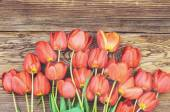 Fresh red tulips on a wood textured background — Stock Photo