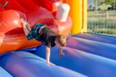 Young boy tumbling around on a jumping castle — Stock Photo
