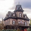 Постер, плакат: Phantom Manor attraction