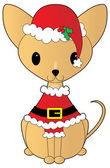 Chihuahua dressed for Christmas — Stock Vector