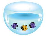 Fishes in Aquarium — Stock Vector