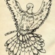 Dove Sketch — Stock Photo #71314451