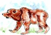 Bear Watercolor — Stock Vector