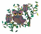 Owls on a Branch — Stock Vector