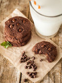 Double chocolate chip cookies — Stock Photo