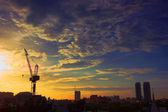 Industrial landscape with silhouettes of cranes on the sunset ba — Stock Photo