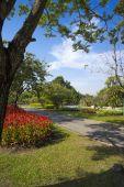 Garden in Suan Luang Rama 9 public park — Stock Photo