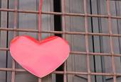 Red heart hanging on the grid of a window — Stock Photo