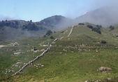 Trench warfare of WWI on monte NOVEGNO in Veneto — Stock Photo