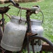 Rusty bike of the milkman with two old milk cans and broken sadd — Stock Photo #53891823