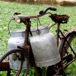 Rusty old bike of the milkman with two old milk cans and broken — Stock Photo #53891833